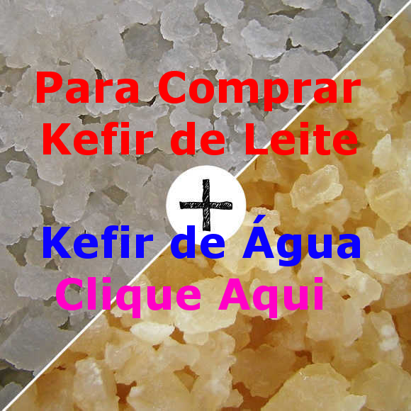 Procurando Onde Comprar Kefir de Leite + Kefir de Água ? Compre Aqui Só R$69,90 e Receba os 2 Juntos com Frete Grátis para Todo Brasil.